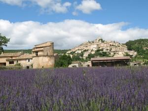 Lavender farm in Simiane-la-Rotonde, France