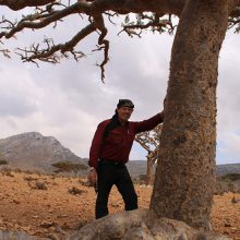 D. Gary Young leaning on a sacred frankincense tree.