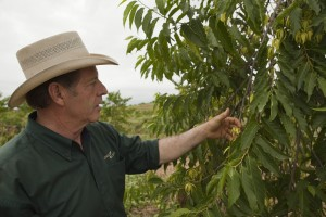 Gary Young with Ylang Ylang flower