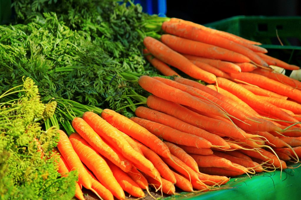 several bunches of carrots