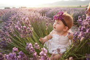 baby girl in lavender field