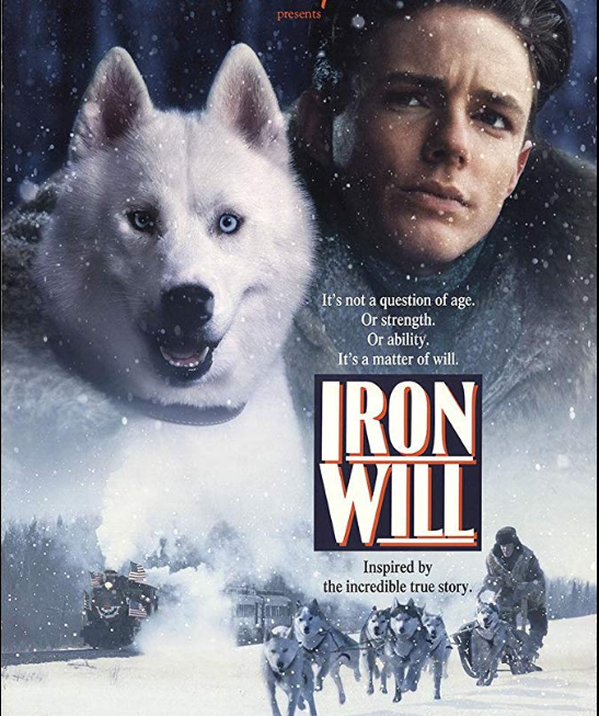 Movie poster of Iron Will with face of Will Steadman next to his racing dog and above a picture of a dogsled