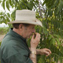 Gary Young smelling ylang ylang flower.