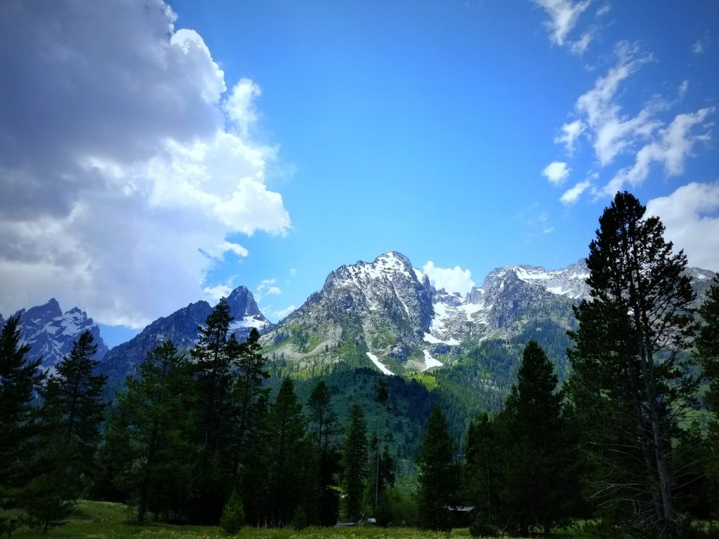 High mountains with blue skies behind and green forest in front