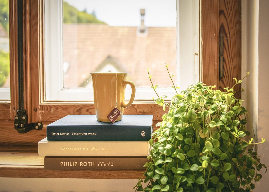 stack of books and a houseplant