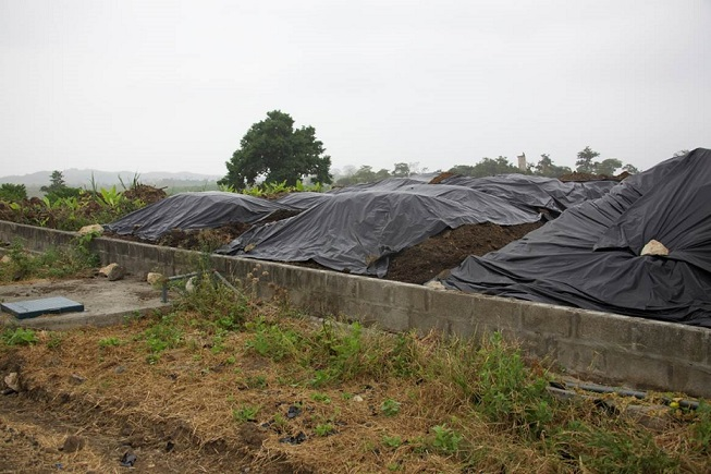 Young Living's Ecuador farm produces lots of composting material that comes from farm animals and from the extraction chambers after distillation of plants. Every bit of this is recycled as compost to enrich the soil.