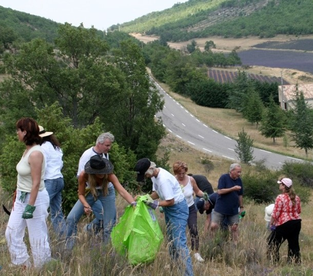 Jean-Noel Landel (in the dark blue t-shirt) shows Young Living members the finer points of wildcrafting the wild lavender plants on the hillside in France.