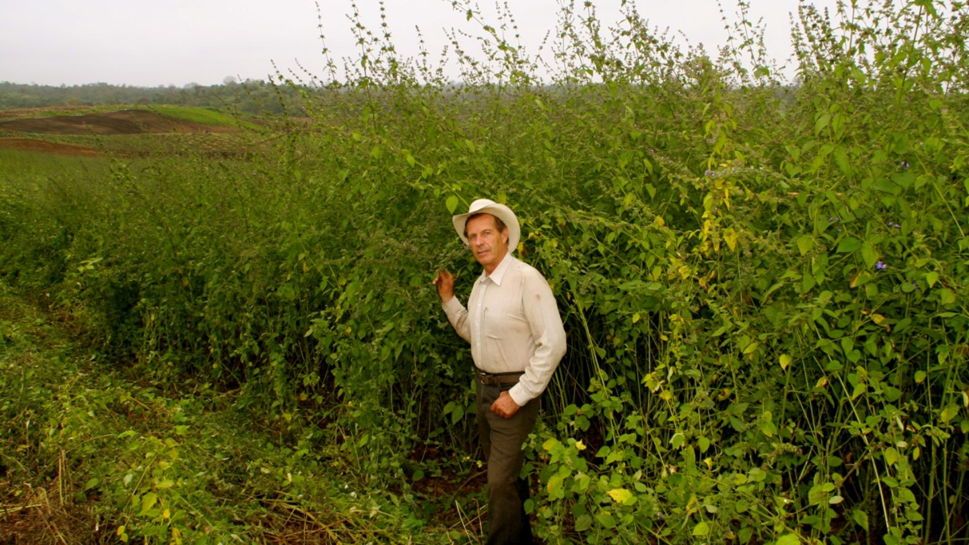 Gary is standing next to the plant Dorado Azul that he discovered and tested. It is now growing on the Young Living farm in Ecuador.