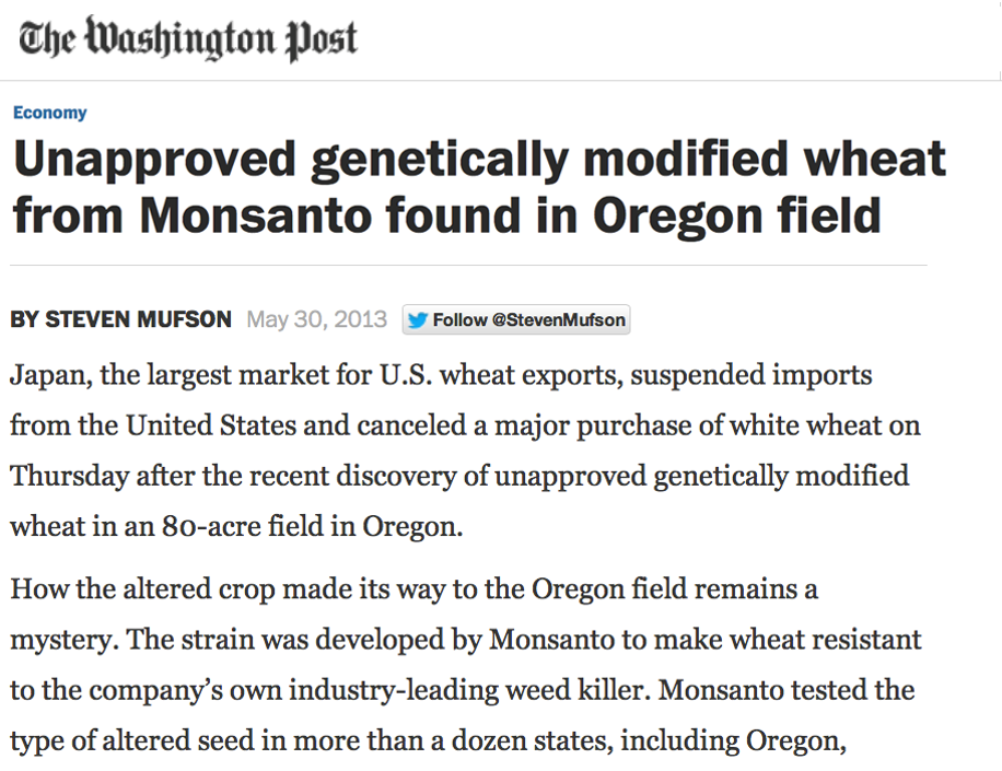An 80-acre field of illegal GMO wheat mysteriously appeared in Oregon in 2013. Now who would have done a thing like that?