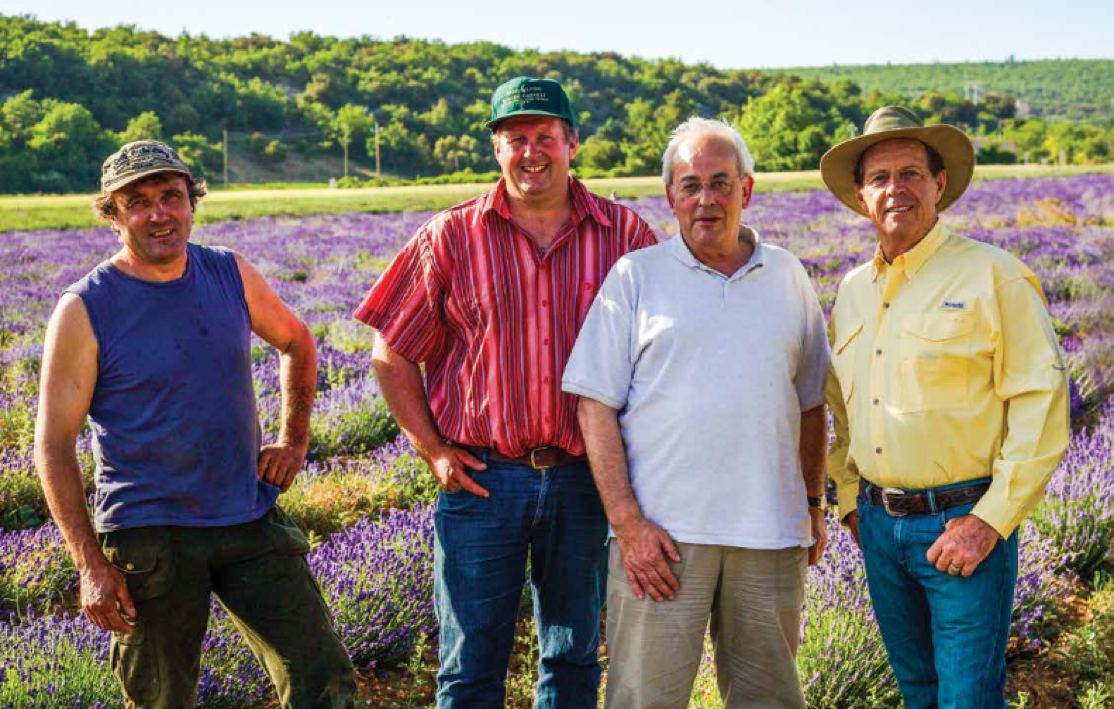 Jean-Marie Blanc, Benoît Cassan, Jean-Noël Landel, and Gary Young merged their farms into the world's largest true lavender farm with 2,000 acres of exquisite Lavandula angustifolia!